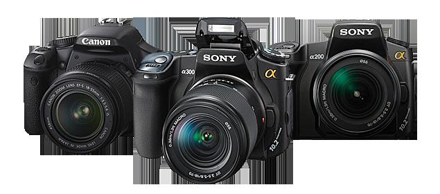 Best DSLR Cameras 2012 (1/3)