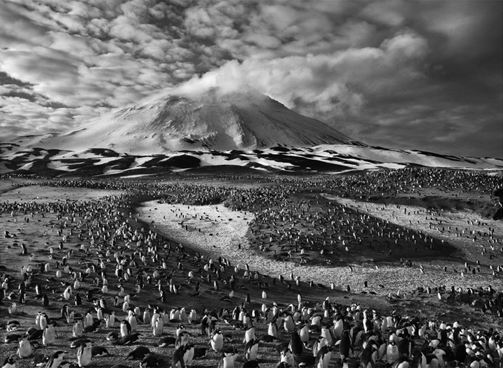 Sebastiao Salgado: The Unfiltered Lens (6/6)