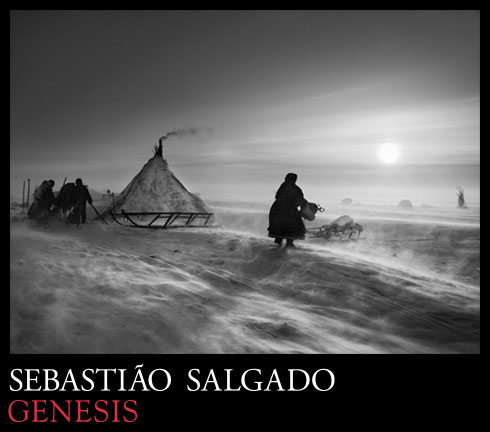 salgado-marketing-graphic-banner-490_119503_2