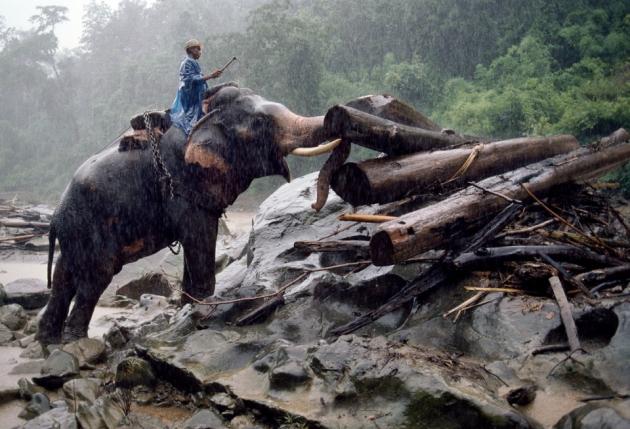 BURMA-10221NF, Myanmar (Burma), 07/1994