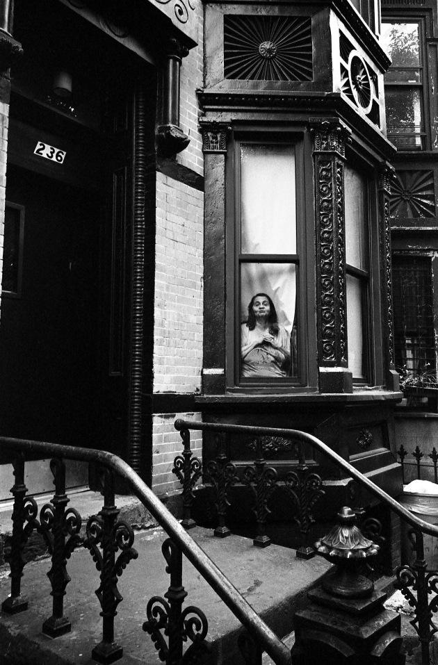 Erica_McDonald_window