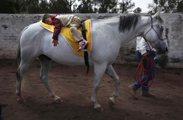 """APTOPIX Mexico Charro Horses Photo Gallery"""