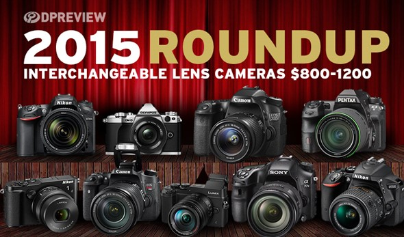 roundups2015-ILC-_800-1200