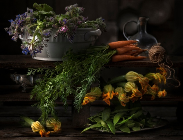 Patrizia Piga's masterly still life of harvested plants and vegetables Photograph: Patrizia Piga/IGPOTY
