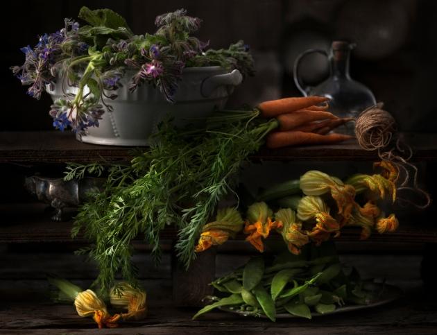 Patrizia Piga's masterly still life of harvested plants and vegetables Photograph: Patrizia Piga/IGPOTY