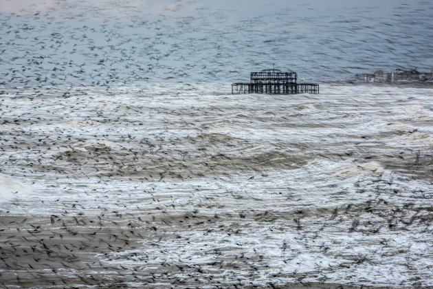 Matthew Cattell Starling Vortex, taken in Brighton, East Sussex, won the landscape photographer of the year award Photograph: Matthew Cattell/PA
